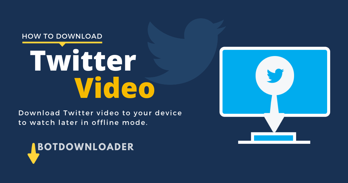 How to Download Twitter Videos on Phone or Pc